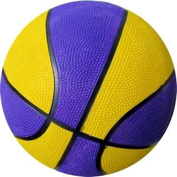 Purple and Yellow Basketball