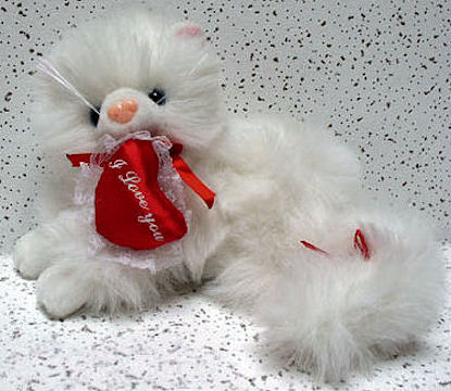 Cat Teddy