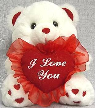 valentine's day teddy bear for him